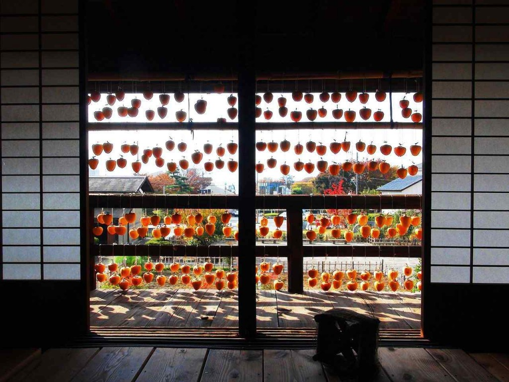 1280px-Dry_persimmon_light_and_shadow